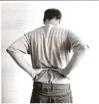 Glândulas Sexuais ou Gônadas - Exercício 1