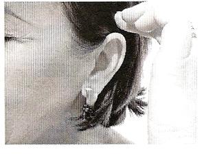 Glândula Hipófise ou Pituitária- Exercício 4